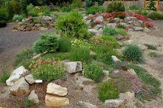 boulder and shrub berm landscaping