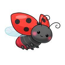 1000 ladybug