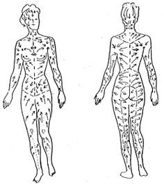 1000+ images about Lymphatic drainage massage on Pinterest