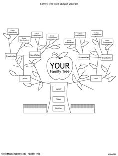 1000+ images about Family Tree Templates on Pinterest