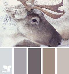 ❥ beautiful colors f