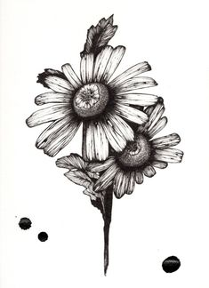 Daisy chain, Daisies and Chains on Pinterest