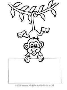 1000+ images about First grade monkey on Pinterest