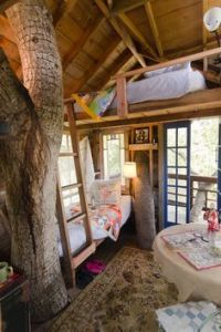 1000+ images about Cool tree houses on Pinterest | Cool ...