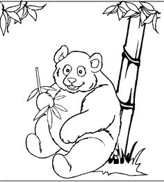 1000+ images about Assorted Animal Coloring Pages on