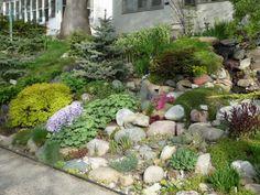 Landscaping For Sloping Backyards Colorful Hillside Rock Garden