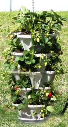 Mr Stacky 3 Tiered Hanging And Stacking Indoor Outdoor Vertical