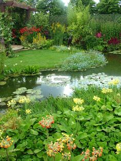 An Entry From Emilialua Gardens Natural Pond And Pond Ideas