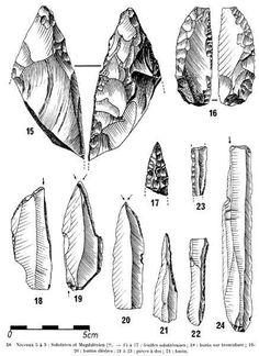 Examples of Solutrean laurel leaf points. The edges are