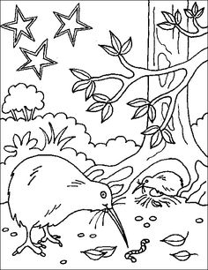 1000+ images about NZ colouring pages on Pinterest
