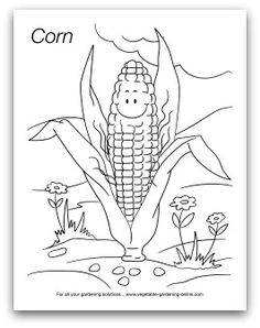 Download our free vegetable garden coloring book! Lots of