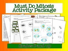 Mitosis Venn Diagrams And Kids Worksheets