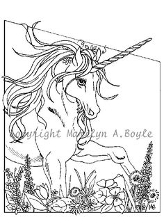 ADULT COLORING PAGES; Set of five, digital downloads