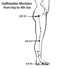 Meridians. Traditional Chinese medicine (TCM) asserts that
