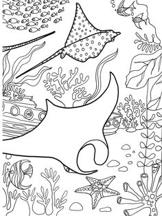1000+ images about Under the Sea Coloring or Painting