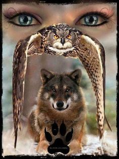 Create Your Own Quote Wallpaper Free Wolf Spirit Animal A Power Animal Symbolic Of Freedom