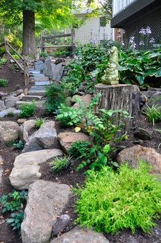 Make A Shady Rock Garden Gardens Spring And Ferns