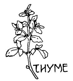 Herbs, Herbs list and Medieval on Pinterest