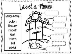 Printables: Label the Parts of an Igloo