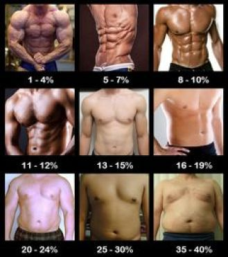 increase bodyfat