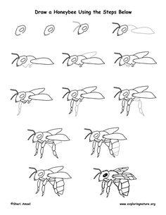 17 Bumble Bee Coloring Pages Bumble-bee-coloring-pictures