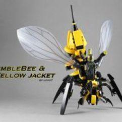 Hornet Anatomy Diagram Jeep Wiring Praying Mantis (mantidae) Lego Insect Diagram: Via Flickr.   Science Pinterest ...