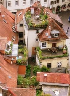 Rooftop Gardens Gardens Green Roofs And The Roof