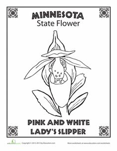 Minnesota coloring page, but all 50 states included