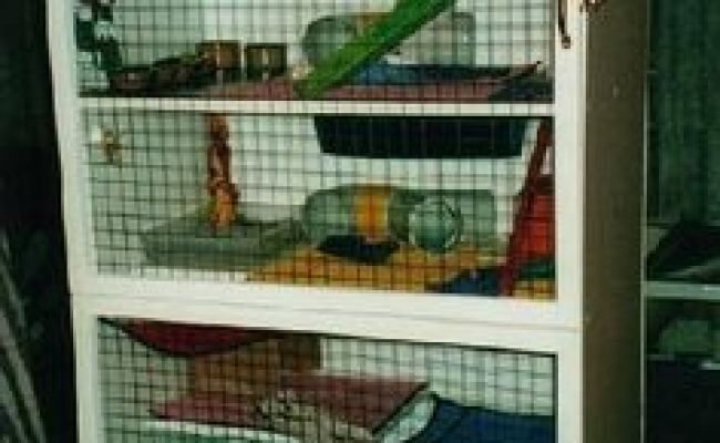 Heather S Moving Castle Homemade Rat Cage And Rat Update