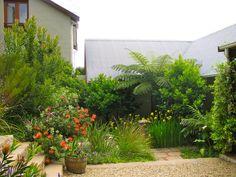 Fynbos Garden Outside Spaces Pinterest Gardens Farblich