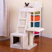 1000+ ideas about Cat Playhouse on Pinterest | Cardboard ...