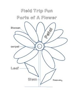 This is a cut & paste worksheet for labeling the 4 major