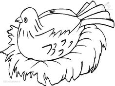 Egg coloring, Coloring pages and Nests on Pinterest