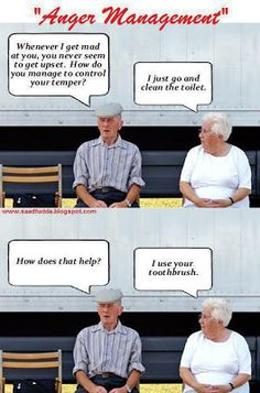 Funny Old People | Ahhh. Better With Age. Yes!! | Pinterest | Chihuahuas. Funny and Funny chihuahua pictures