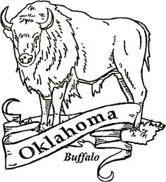 Click the Oklahoma State Tree coloring pages to view