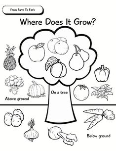 Bingo, Free printable and Fruits and vegetables on Pinterest