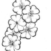 Free Printable Four Leaf Clover Templates