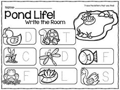 My Science Journal: Pond Animals Your preschool