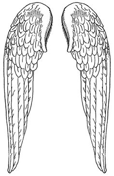 1000+ images about Printables ~ Wings & Things on