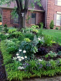 Perennial Shade Garden Bagley Landscapes Color Zone 3
