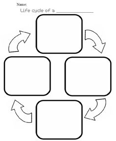Printables. Life Cycle Of A Plant Worksheet. Mywcct