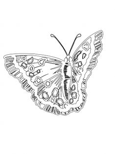 Hard butterflies Coloring Pages for Adults to print