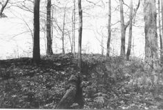 Small Adena Hopewell burial mound located within the city