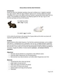 Darwin Natural Selection Worksheet | Classroom | Pinterest ...