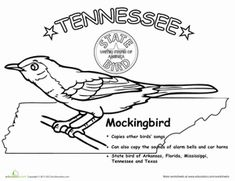 Tennessee State Flag Coloring Page; PreK-5; Visual Art