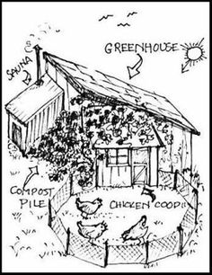 Chicken Coop/Greenhouse: slanted roof, sun during winter