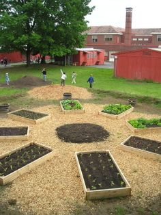 It Seems Important To Me To Make School Gardens Both Instructional