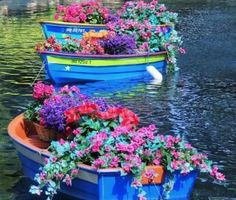 Red Flowers Make This White Boat Stand Out GARDEN UNIQUE