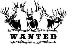 Hunting Decals Special Hunting Limited Edition! 8in $12