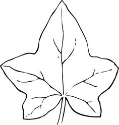 Ivy leaf pattern. Use the printable outline for crafts